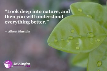 Look-deep-into-nature-and-then-you-will-understand-everything-better-Albert-Einstein-Nature-Quote-Be-An-Inspirer