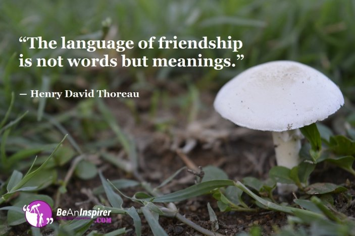 The-language-of-friendship-is-not-words-but-meanings-Henry-David-Thoreau-Friendship-Quote-Be-An-Inspirer