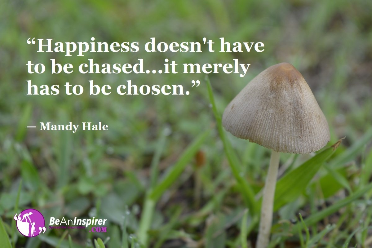 Happiness-doesnt-have-to-be-chased-it-merely-has-to-be-chosen-Mandy-Hale-Happiness-Quotes-Be-An-Inspirer