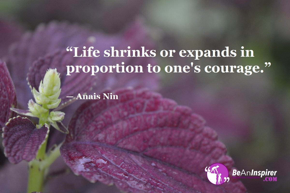 Top 100 Life Quotes (With Nature Photographs)