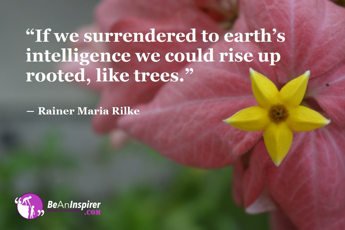 If-we-surrendered-to-earths-intelligence-we-could-rise-up-rooted-like-trees-Rainer-Maria-Rilke-Nature-Quotes-Be-An-Inspirer