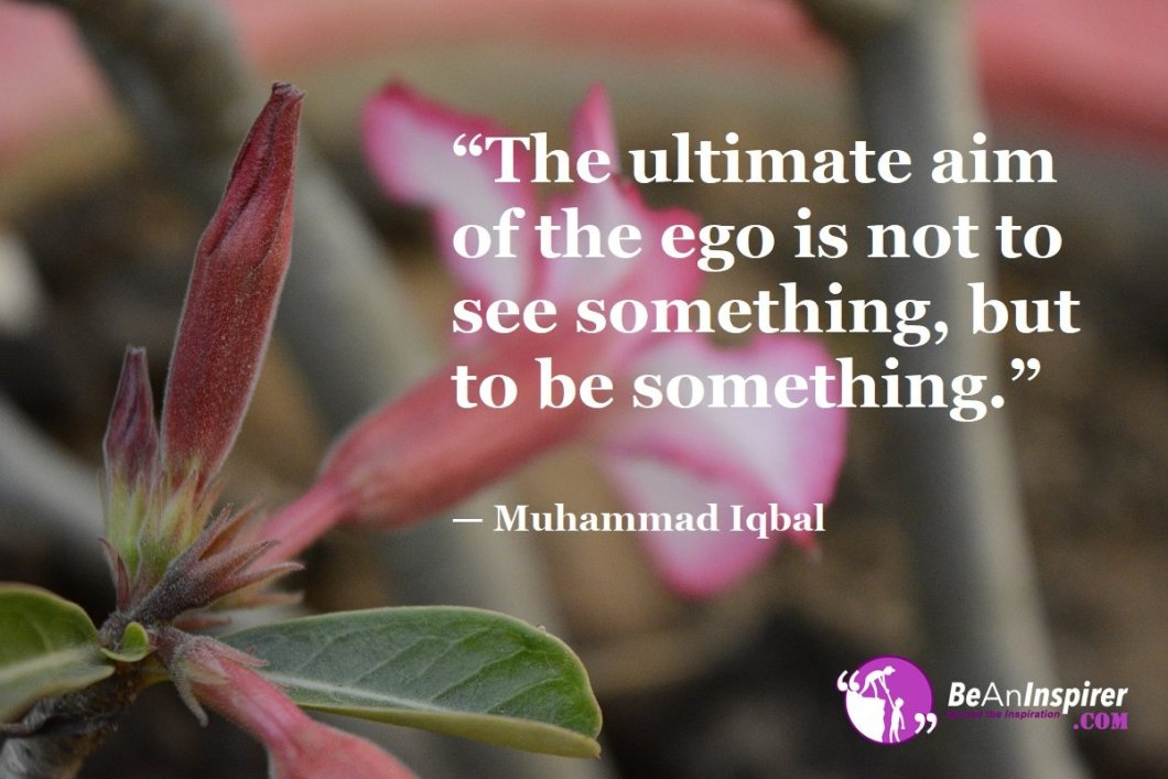 """The ultimate aim of the ego is not to see something, but to be something."" — Muhammad Iqbal"