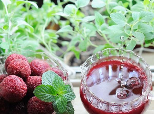 楊梅酒【天然發酵 / 酒泡法】Homemade Chinese Bayberry Wine
