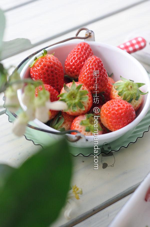 Strawberry_fruit_leather_05