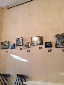 photographs, spiders web, nylon