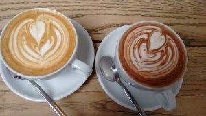 latte art, hot chocolate art, soya art, albedo, science and art mixing