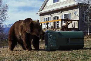 BearSmart Communities