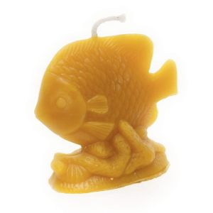 Tropical Fish Beeswax Candle