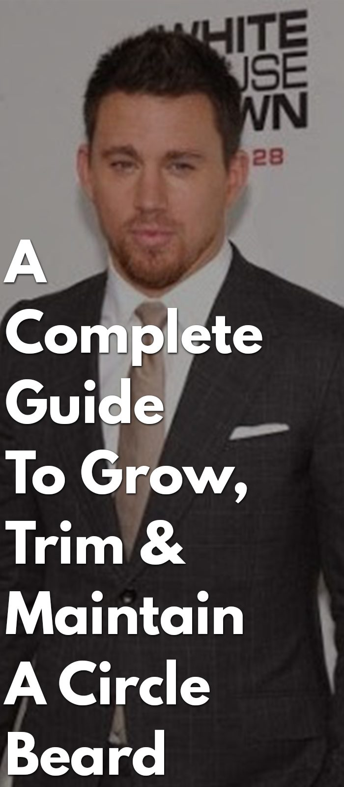 A-Complete-Guide-To-Grow,-Trim-&-Maintain-A-Circle-Beard
