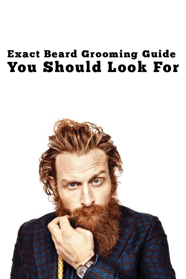 Exact Beard Grooming Guide