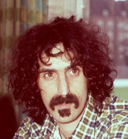 All You Need To Know About The Zappa Beard.
