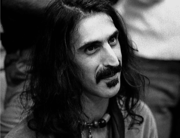 zappa beard style for men