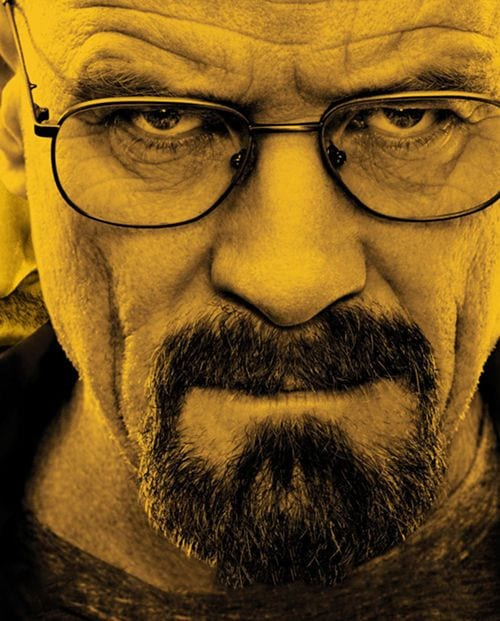 breaking-bad-walter-white-circle-beard