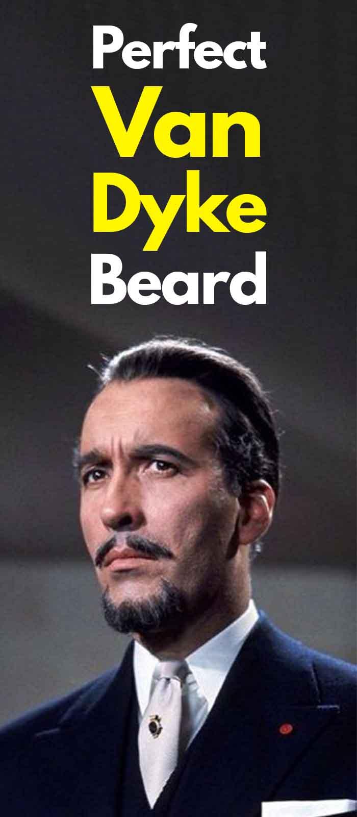 Van dyke Beard for men!