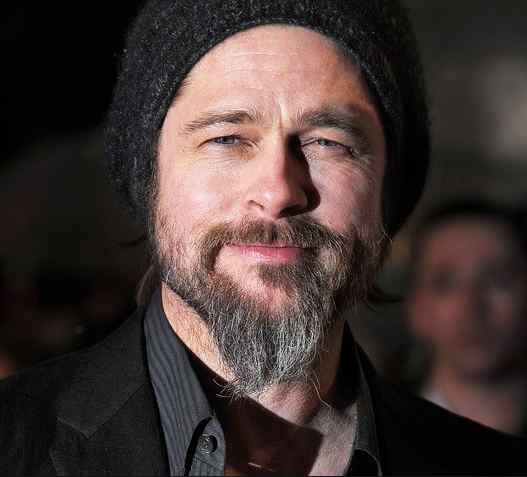 brad-pitt-french-fork-beard-round-face
