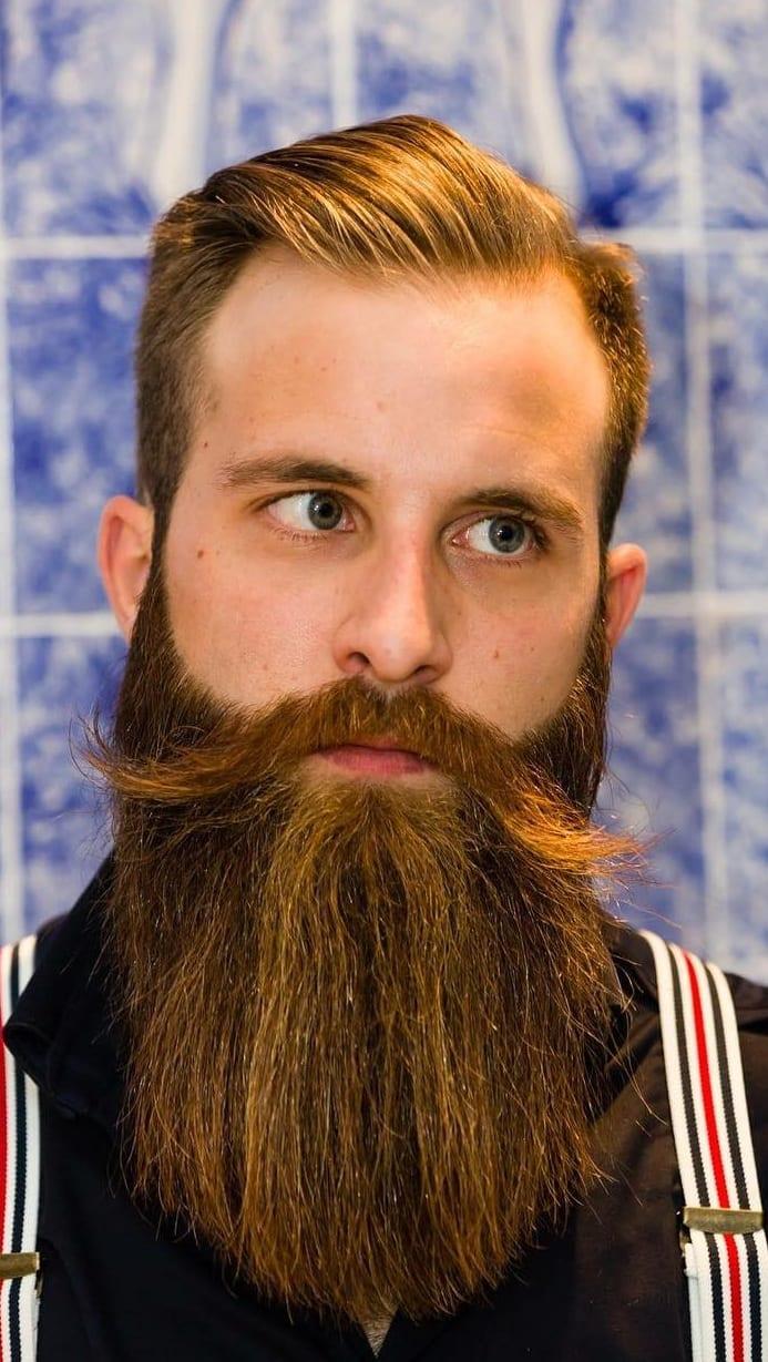 Long beard ideas for men