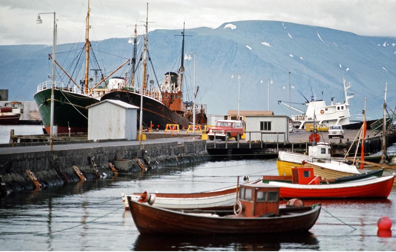Iceland 7 - Harbor