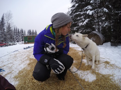 Golden Dog Sled Adventures, Canada