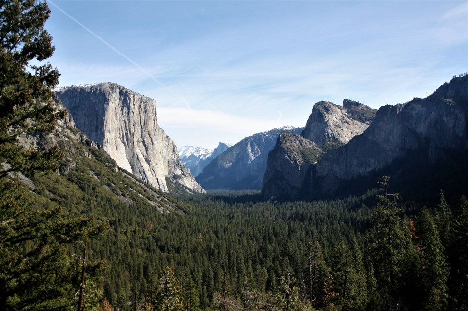 Yellowstone, Zion, Yosemite, Bryce, Dry Tortugas, Grand Canyon, Rocky Mountain, Olympic, Big Bend, Glacier, Denali