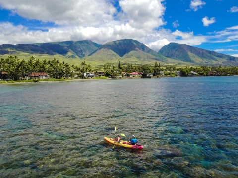 Maui Kayaking - Maui Ocean Sports. See more at www.beardandcurly.com
