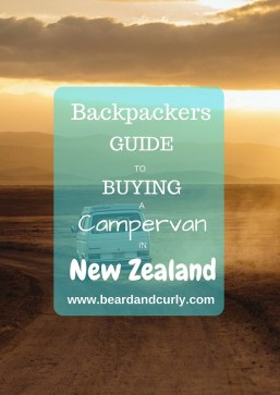 Backpackers Guide to Buying a Campervan in New Zealand, Guide to Buying a Campervan in New Zealand, Buy a Car in New Zealand, How to Buy a Campervan in New Zealand, What Do I need to get to buy a car in new zealand, beardandcurly.com