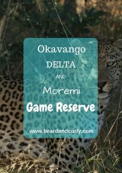 Okavango Delta Safari, Moremi Game Reserve, Scenic Flight over the Okavango Delta, Safari in Moremi, Moremi to Chobe Safari Drive, Botswana, beardandcurly.com