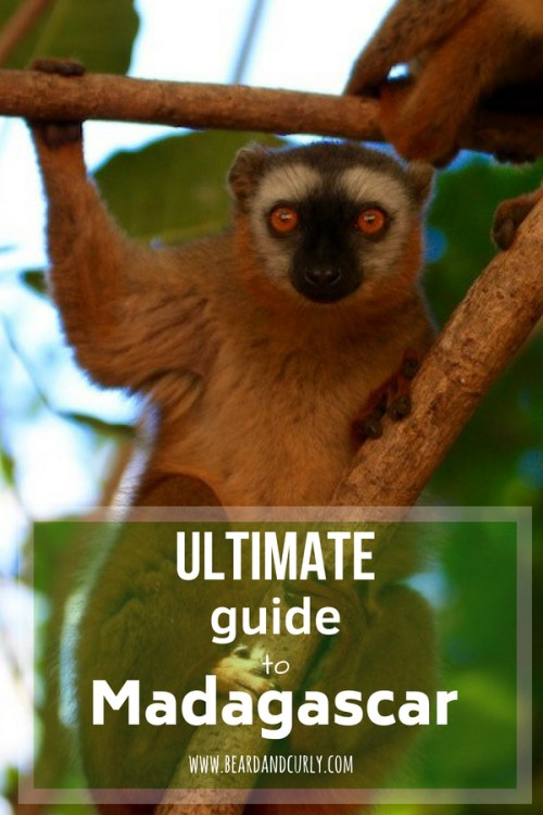 Ultimate Guide to Madagascar, Travel Guide, Backpacking in Madagascar, Baobabs, Tsingy, Rainforest, Lemurs, #holiday #backpacking #lemur #rainforest #madagascar www.beardandcurly.com