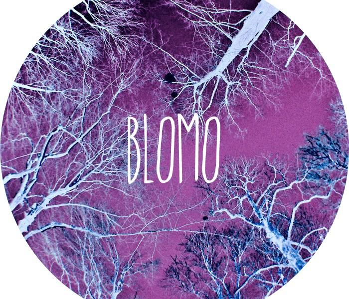 Czym jest Blomo?
