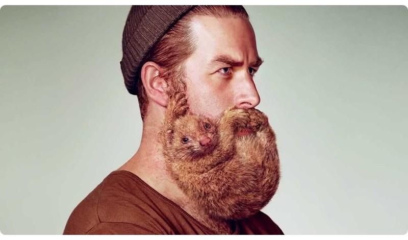 Co Mówią Internety: Dlaczego masz brodę?