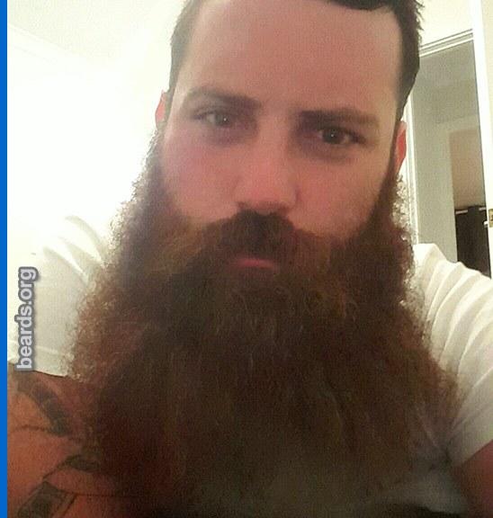 Brock, beard photo 2