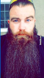 Casey, beard photo 4