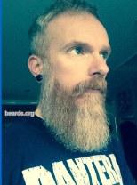 David, beard photo 6