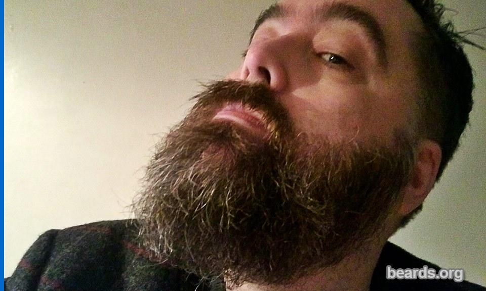 Iain, beard photo 5