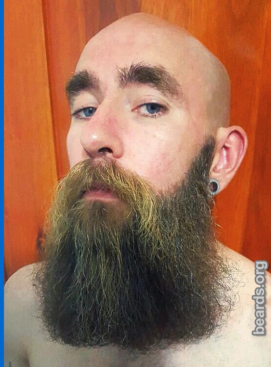 Julio's beard photo 3