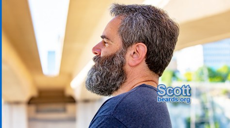 Scott's superb beard feature image 1
