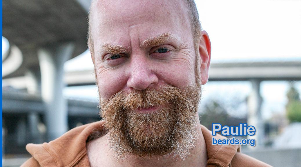 Paulie's superb beard feature image 1