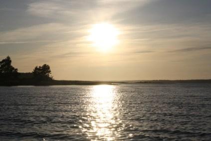 Jäverön 2009