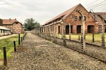 Auschwitz_0573
