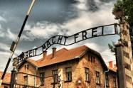 Auschwitz_0687