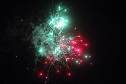 2012_01 - Året började med sedvanligt bombardemang utanför huset.
