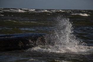 180810-175923-waves-1D8A7838