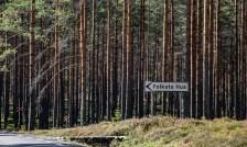 180802-092042-skog-1D8A5181