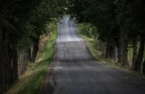 200912-143515-road-IMG_5189