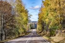 201018-123048-road-1D8A3517