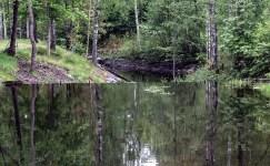 200524-165843-borgvik-1D8A8583