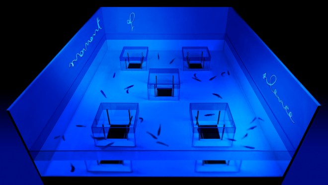 """""""MilaBlue"""", 2/2 Project - Frieze Artist Award - London, © 2015 Wood, sand, plexiglass, water, neon light and fishes; variable dimensions - courtesy the artist"""