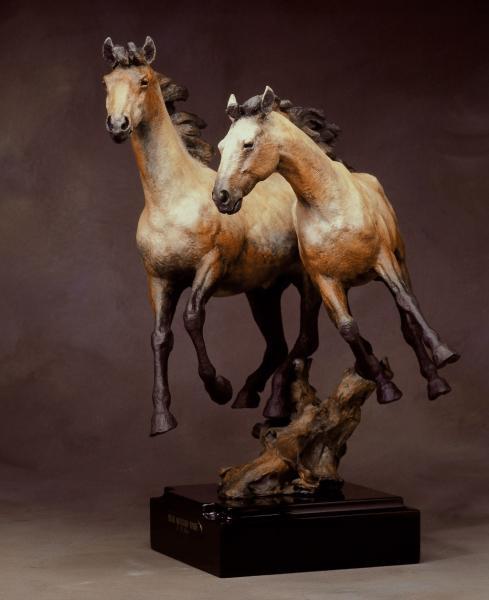 Pryor-Mountain-Ponies by Jack Muir