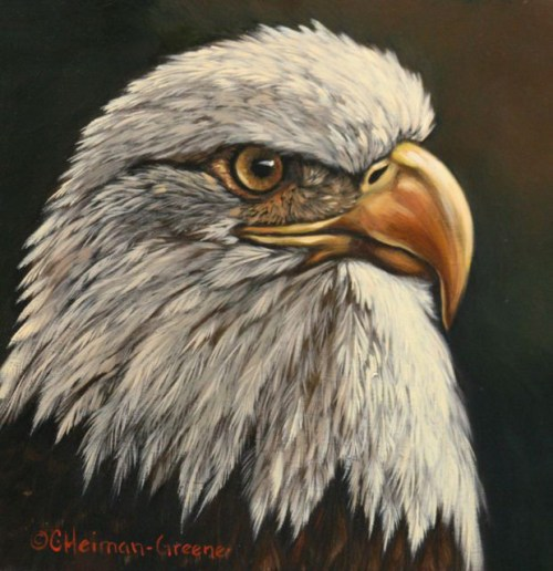 Bald Eagle by Carol Heiman-Green