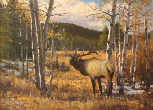 Lodgepole Creek Bull by Jerry Inman