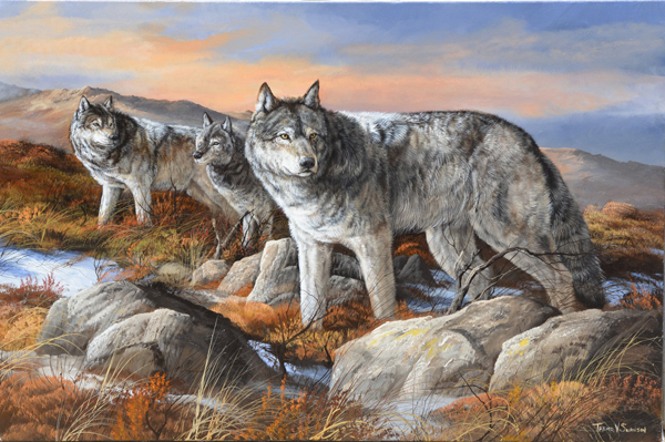 All on Alert - Wildlife art by Trevor V. Swanson